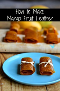 mango-fruit-leather-lead