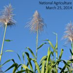 Get Ready for National Agriculture Day