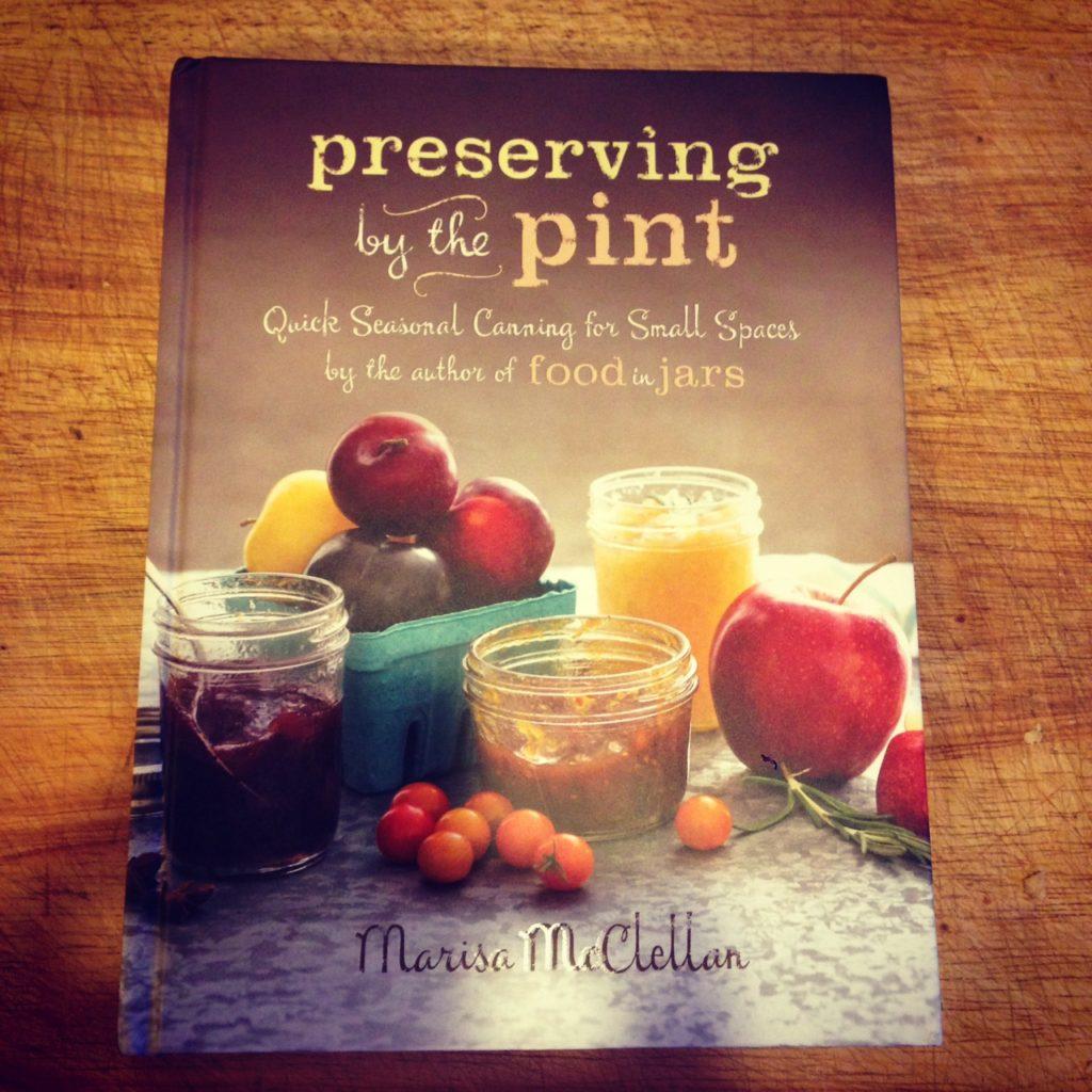 marisa mcclellan book