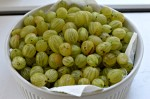 Farmers Market Find: Gooseberries