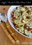 Cortland Apple, Fennel and Bleu Cheese Salad for Thanksgiving