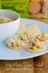 Soy-Lime Tuna Salad on Gold Emblem Abound Baked Rice Thins