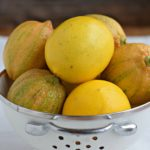 Meyer Lemon Recipe Round-Up
