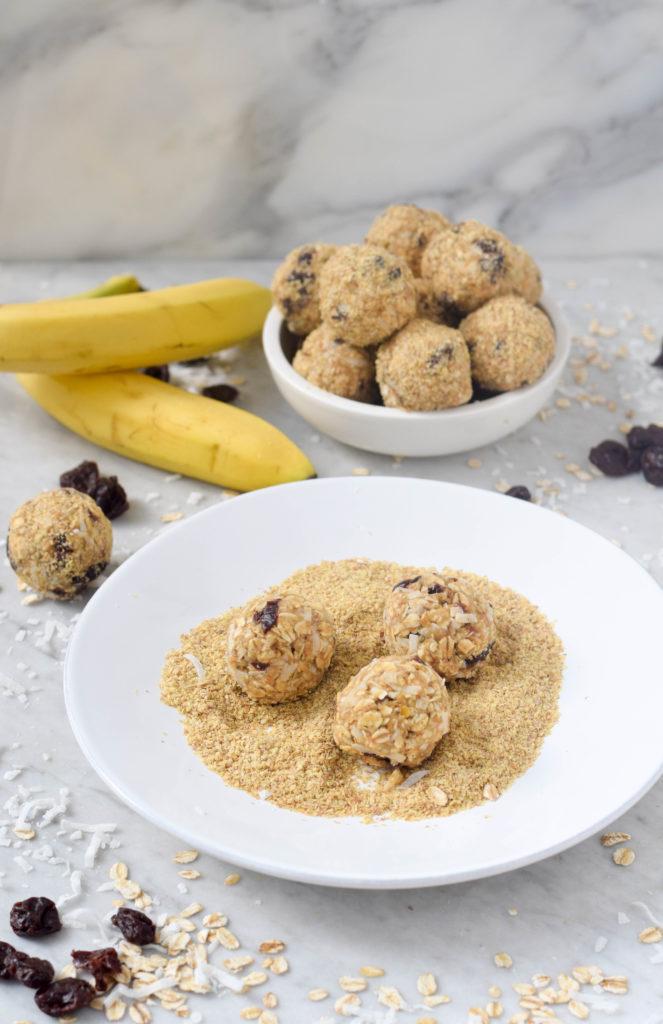 nut free energy bite recipe